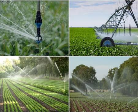 Mezőgazdasági öntözés