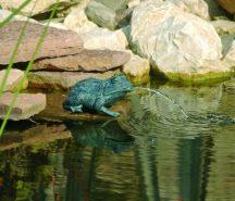 Béka kicsi kerti vízköpő 12cm