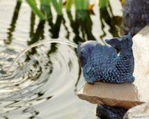 Hal kicsi kerti vízköpő