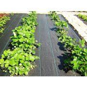 Agroszövet PPHA 100 g/m2, 1,05 m x 25 fm/26,25m2