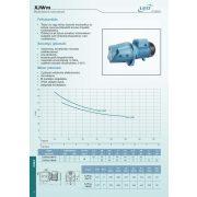 LEO Vízszivattyú XJWm/3BH 100/76 230V
